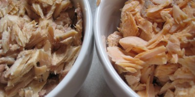 Canned salmon on the left, fresh on the right