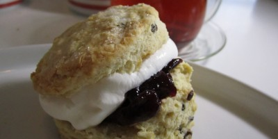 Homemade Cream Scone with jam and whipped cream