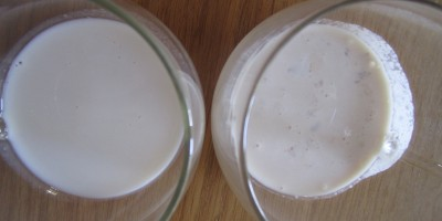 International Delights creamer on the left, homemade on the right